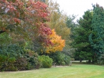 Front-Lawn-autumn-MS