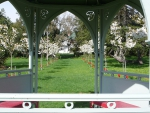 red-tulips-and-white-cherry-blossom-from-gazebo